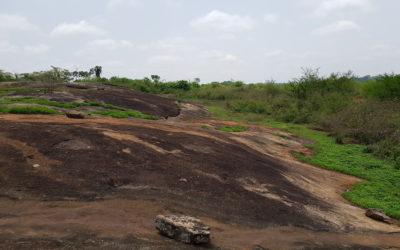 Оценка ресурсов полезных ископаемых